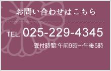 お問い合わせはこちら TEL:025-229-4345 受付時間:午前9時~午後5時